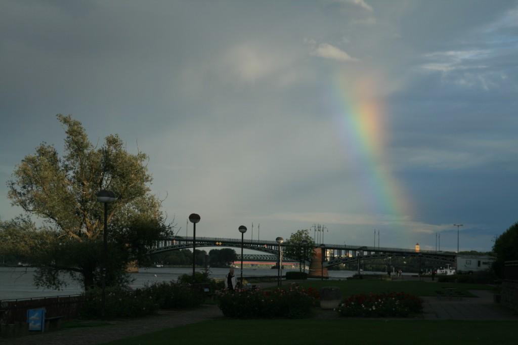 mainz 2011. regenbogen am rhein